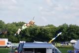 HU-Drachenfest 2014 (26/128)