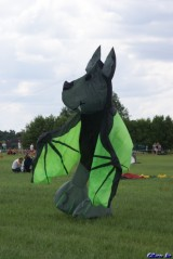 HU-Drachenfest 2014 (75/128)