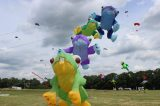 Drachenfest 2016 (20/411)