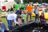 Drachenfest 2016 (50/411)