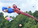 Drachenfest 2016 (96/411)