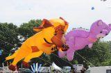 Drachenfest 2016 (113/411)
