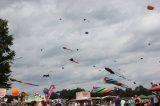 Drachenfest 2016 (123/411)