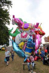 Drachenfest 2016 (159/411)