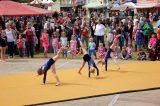 Drachenfest 2016 (163/411)