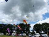 Drachenfest 2016 (177/411)