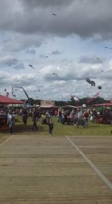 Drachenfest 2016 (182/411)