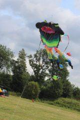 Drachenfest 2016 (193/411)