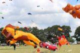 Drachenfest 2016 (199/411)