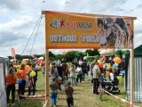 Drachenfest 2016 (200/411)