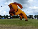 Drachenfest 2016 (240/411)