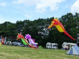 Drachenfest 2016 (250/411)