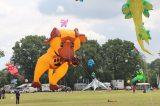Drachenfest 2016 (269/411)