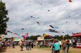 Drachenfest 2016 (334/411)