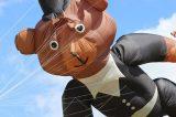 Drachenfest 2016 (381/411)